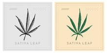 Thin Cannabis Marijuana Leaf Or Hemp Sativa Type Vector
