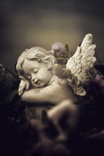 Guardian Angel And Spring Flowers