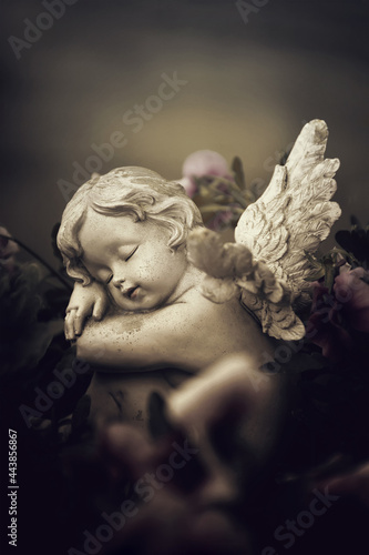 Foto Guardian angel and spring flowers