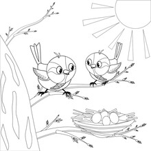 Children's Coloring Book Sparrows On A Tree. Sparrows Sit On A Tree Branch And Look At Their Nest. There Are Eggs In The Nest. The Eggs Will Hatch Soon Chicks.