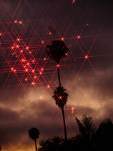 Sunset LA Palms