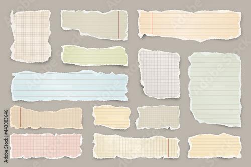 Fotografie, Obraz Ripped colorful paper strips