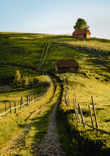 Countryside Landscape With Road, Cottage And Fields