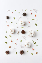 Dried Cotton Flowers, Cones And Leaves