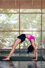 Dwi Pada Viparita Dandasana (Upward Facing Two Foot Staff Pose)