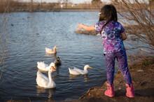 Girl In Purple Feeding Ducks In A Pond