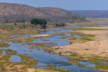 Hippos, Waterbucks And Birds On The Riverine Landscape Of The Olifants River, Central Kruger National Park, South Africa