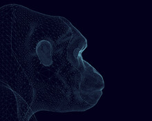Gorilla Head Wireframe Made Of Blue Lines On A Dark Background. Side View. 3D. Vector Illustration