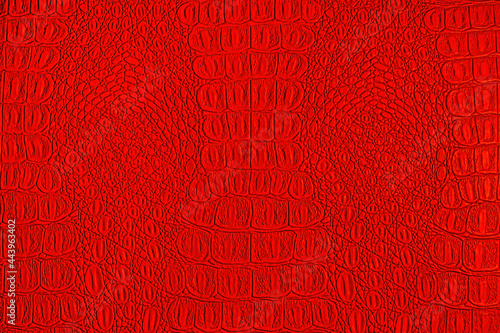 Fotografija Red crocodile leather texture. Abstract backdrop for design.