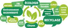 Nuage De Mots, Tags, Bulles : Recyclage