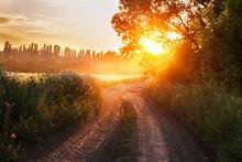 Sunset On The Road Near Wheat Field