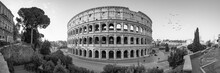 Colosseum Panorama In Black And White, Rome, Italy