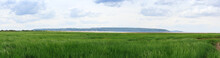 Salt Marsh Coastal Wetland, Weston-Super-Mare, UK. Panoramic Landscape