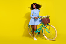Full Length Body Size Photo Of Girl In Dress Keeping Retro Bike With Flower Basket Looking Copyspace Isolated Bright Yellow Color Background
