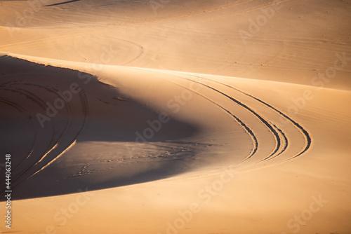 Canvas Sand dune