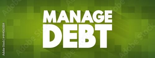 Fotografiet Manage Debt text quote, concept background