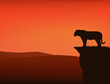 wild tiger standing on high cliff at sunset - vector silhouette view of dramatic wilderness scene