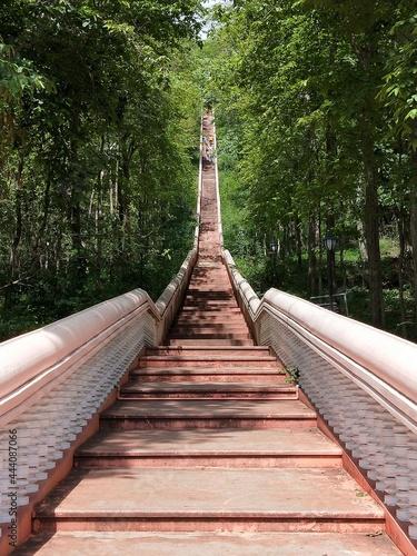 Wallpaper Mural View Of Footbridge In Forest