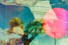Triple Exposure Of Tree, Sun And Rocks
