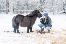 Young Woman Tending To Miniature Pony In The Snow