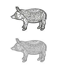 Hand Drawn Zen Pig With Abstract Patterns On Isolated Background. Design For Spiritual Relaxation For Adults. Freehand Art. Different Color Options