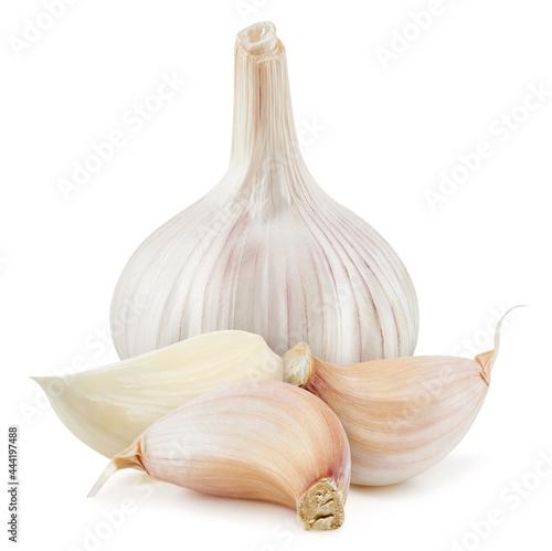 Garlic isolated on white background. Garlic and cloves on white background. Garlic with clipping path