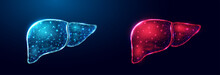 Human Liver. Wireframe Low Poly Style. Concept For Medical, Treatment Of The Hepatitis.  Abstract Modern 3d Vector Illustration On Dark Blue Background.