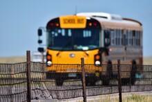 School Bus In Summer
