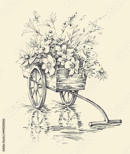 Fotografia Garden wheelbarrow with flowers