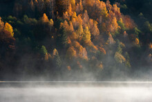 Beautiful Autumn Forest Reflecting In Foggy Lake