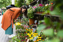 Cheerful Woman Choosing Flowers In Garden Center