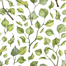 Square Seamless Pattern With Realistic Painted Green Leaves. Vibrant Watercolor Green Wallpapers. Green Botany. Wrapping Paper And Backdrop Design