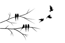 Flying Birds Silhouettes And Birds On Branch Illustration Isolated On White Background, Vector. Wall Decals, Art Decoration. Modern Wall Art Design, Artwork. Beautiful Painting Design