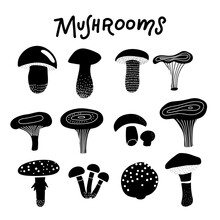 Black Silhouette Of Forest Mushrooms. Decorative Doodle Black And White Mushrooms Illustration. Vector Clipart Isolated On White Background.