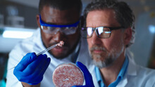 Multiracial Scientists Examining Cell Meat In Petri Dish