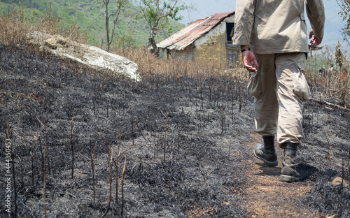Wallpaper Mural siembra quemada