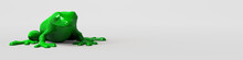 Green Frog Banner On White Background. 3d Illustration.