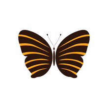 Abstract Butterfly Vector Template Design.butterfly Vector In Orange And Brown Color. Logo Template, Minimal, Vector, Simplified Object- Illustration