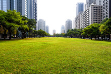 View Of The Cityscape In The Morning, Taichung Taiwan. Near The National Taichung Theater.
