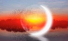 """Silhouette Of Birds Flying Above The Lake Crescent Moon In The Background At Amazing Sunset """"Elements Of This Image Furnished By NASA """""""