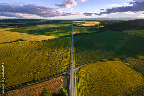 Murais de parede Panorama in the middle of fields divided by a direct path at sunset in summer