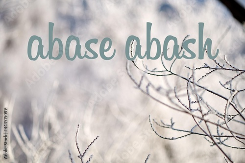 Fototapeta The words abase and abash differ by only one letter. Wordplay