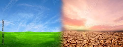 Fotografía Compare dryness and freshness