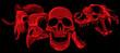 vector illustratio of animal skull art design