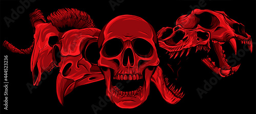 Foto vector illustratio of animal skull art design