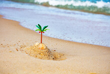 Miniature Palm And Tiny Toy Island In The Sand