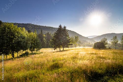 Krajobraz górski o poranku