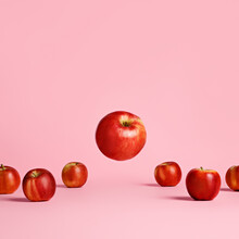 Red And Ripe Apples Placed In A Row With One Flying And Levitating Apple Isolated On A Bright Pink Background. Summer Or Fall Fruit, Delicious And Healthy Snack. Creative Food Concept.