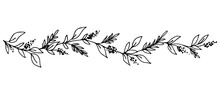 Simple Hand-drawn Vector Drawing In Black Outline. Long Floral Banner, Garland Of Leaves, Inflorescences. Flower And Branch. Ink Sketch. Horizontal Patterned Border.