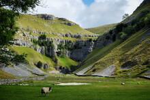 Limestone Scenery At Gordale Scar, Yorkshire Dales, UK